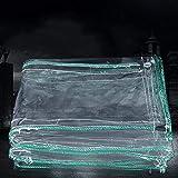 Telone BSNOWF- Chiaro Impermeabile in PVC Spaccato 0,7 mm Anti-Agenti atmosferici, Telo da pavimentazione Esterna in plastica Rivestimento in Latta per tettoia, 500 g / m2 (Dimensioni : 2x3m)