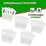 Schlupfwespen gegen Textilmotten - Bis 6 Fächer und Schubladen oder 20 m² Teppichfläche - 5 Lieferungen x 4 Kärtchen