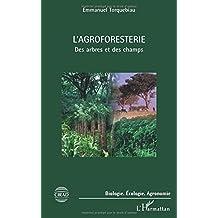 L'agroforesterie : Des arbres et des champs
