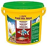 sera 07102 pond mix royal 3800 ml - Futtermischung aus Flocken, Sticks und mit 7 % Gammarus als Leckerbissen für alle Teichfische