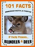 101 Facts... Reindeer & Deer! Reindeer Books for Kids. (101 Animal Facts Book 16)