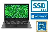 """Lenovo V320-17IKB - Intel 4415U - 128GB SSD - 4GB DDR4-RAM - Windows 10 PRO - 44cm (17.3"""" LED TFT) Display MATT"""