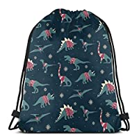 Qian Mu888 Dinos In Sweaters Drawstring Backpack Bag Lightweight Gym Travel Yoga Casual Snackpack Shoulder bag for Hiking Swimming beach