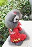 MON5F Home Invierno Ropa para Mascotas Ropa Volando águila suéter (Color : Red, Size : M)