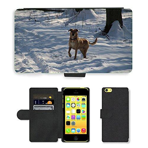 Just Mobile pour Hot Style Téléphone portable étui portefeuille en cuir PU avec fente pour carte//m00140103pour chien Animaux Pet Race neige pour petit chien//Apple iPhone 5C