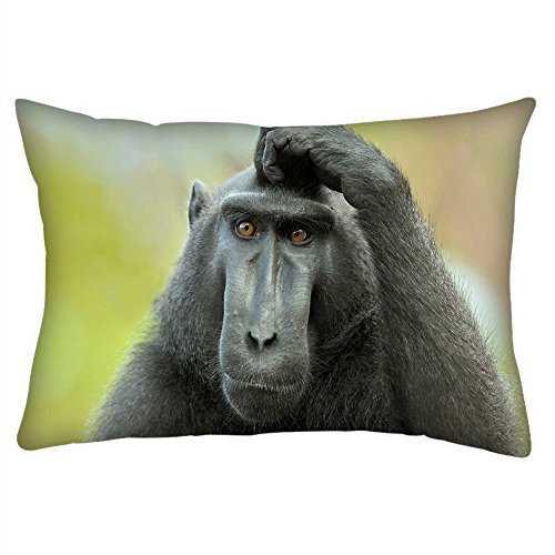 snoogg-schwarz-ape-rechteck-uberwurf-werfen-kissenbezug-decoarative-kissen-fall-508-x-762-cm