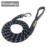 Premium Hunde-Leine aus Profi-Kletterseil & High-Performance-Karabiner inkl. 2 Gratis-Booklets | Extremes Leicht-Gewicht (ca.115g) | Softe Neopren-Handschlaufe | Sicherheits-Reflektoren | Pets'nDogs