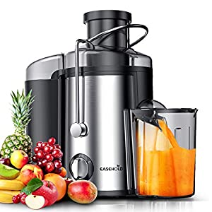 EASEHOLD Fruit Juicer Professional Whole Vegetable Extractor 800W Dual Juice Machine