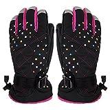 CHIC-CHIC Winter Handschuhe Ski-Handschuhe Wasserdicht Winddicht Warm Leicht Fahrrad Motorrad