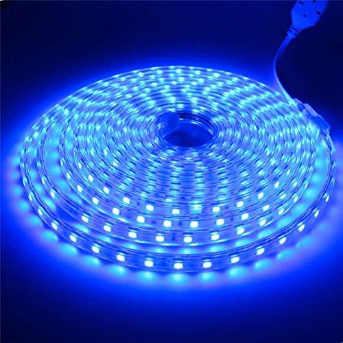 Strisce LED SMD5050 60 LED/M 220v (5M Blu) IP65 Impermeabile Con Spina ONSSI LED