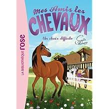 Mes amis les chevaux, tome 3 : Un choix difficile