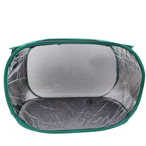 SEVENHOPE Zusammenklappbar Insekt Schmetterling Lebensraum Käfig Terrarium Pop-up hoch weiß Kinder Schmetterling Net (schwarz)