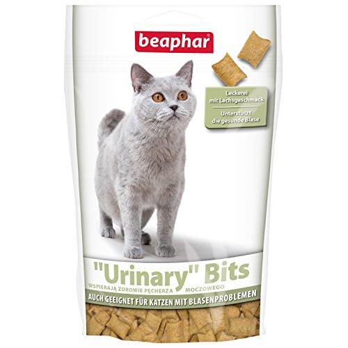 Urinary Bits per Gatti | Croccante Gatti perdite erlies | Supporta la Sano vescica | Sacco con Salmone Gusto | con Vitamina B 6Gatti | 150G