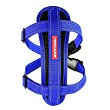 EzyDog 5708214105027 Brustgeschirr/Chest Plate Harness, XXS, blau