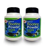 Doff Poudre d'hormones d'enracinement 75g–aide à la pousse de nouvelles ...