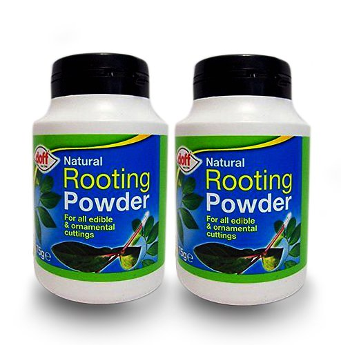 2-x-doffr-hormone-rooting-powder-75g-help-new-roots-on-cuttings-and-promotes-strong-healthy-roots
