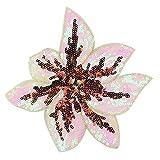 Wicemoon Pailletten Blumen Stickerei Aufnäher Patch DIY Kleidung Zubehör Dekoration
