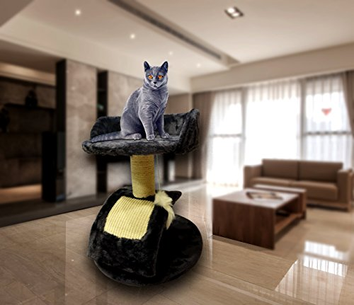 Pets Empire Cat Activity Tree with Scratching Posts -Color May...