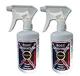 2x 500 ml PROFI Rostumwandler Phosphatierung Rostschutz Rostentferner Phosphorsäure