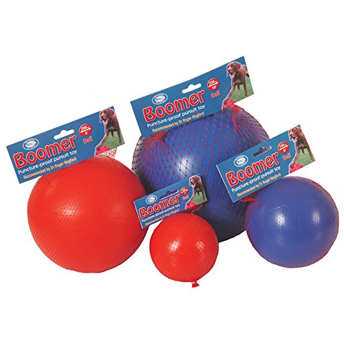 the-company-of-animals-boomer-ball-toy-10in-assorted