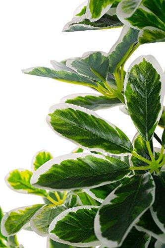 XL Schefflera Baum JWS1833 Riesige künstliche Schefflera 100 cm hoch Strahlenaralie, mehrfarbige Blätter,Kunstpflanze, Kunstblume, Kunstbaum, Zimmerpflanze künstlich