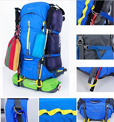 60L spessore idrorepellenti uomini e donne all'aperto zaino trekking borse alpinismo borsa tracolla in tessuto ( Colore : Rosso , dimensioni : 60l ) Viola