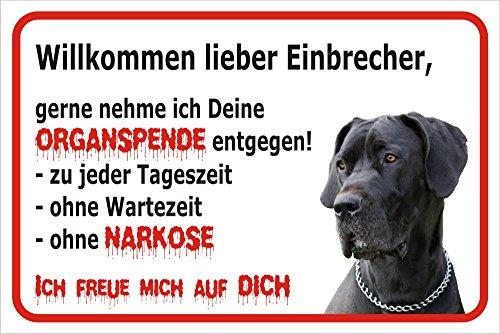 AdriLeo Schild Vorsicht Deutsche Dogge - Willkommen lieber Einbrecher (20x30cm)