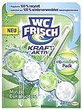 WC Frisch Kraft-Aktiv Pro Nature Minze & Eukalyptus, 10er Pack (10 x 50 g)