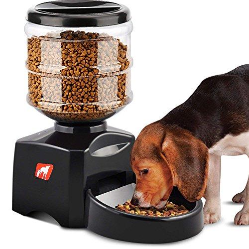 Comedero Automático, 5.5L Dispensador de Comida para Mascotas Perros Gatos, Alimentador Automático Programable con Grabación de Mensajes de Voz, Temporizador de Comida con Pantalla LCD, Negro