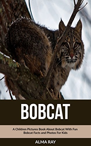 bobcat-a-children-pictures-book-about-bobcat-with-fun-bobcat-facts-and-photos-for-kids-english-editi