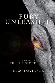 Fury Unleashed (The Life Stone Series Book 2) (English Edition) von [Davidson, D. M.]