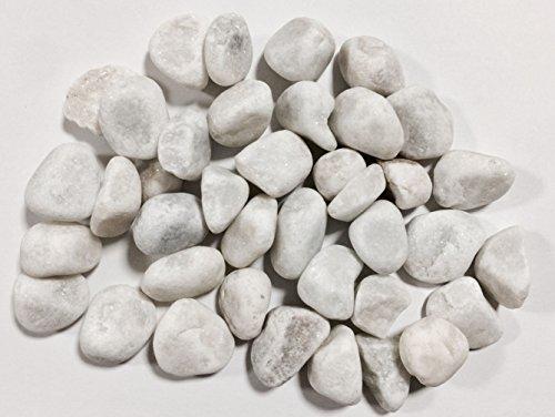 Kieselsteine Zierfische Farbe Weiß 1–2cm/2kg Boden Aquarium Teich Garten