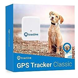 Tractive GPS Tracker für Hunde - Leichter und wasserdichter Peilsender mit Echtzeit GPS-Ortung (Vorgängermodell)