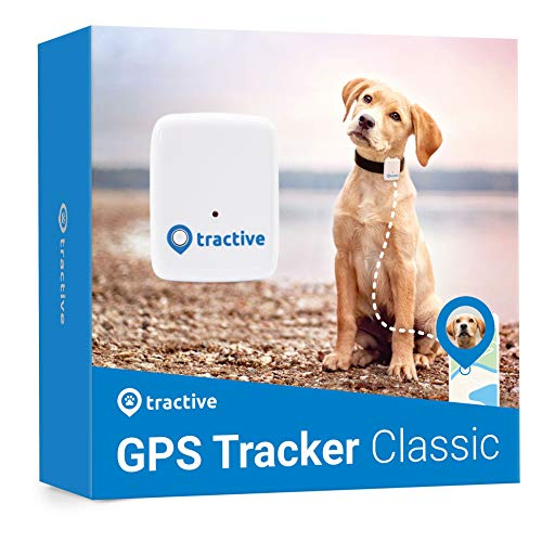 Tractive GPS Tracker für Hunde - Wasserdichter Peilsender mit Echtzeit GPS-Ortung