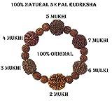 Best Bracelets For 4 - SHI SHANKAR ACCESSORIES Multicolour Wooden Rudraksha 2 3 Review