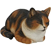Real Life Dreaming Cat (Life (Tamaño) de caparazón de tortuga