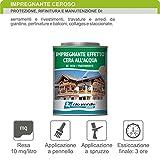 Rioverde impregnante cerato trasparente ad acqua ml.750