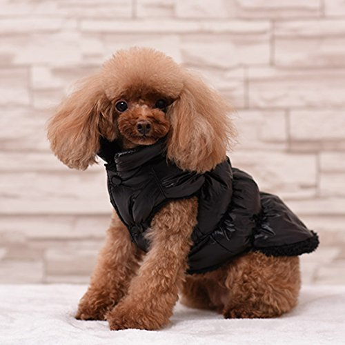 Rantow Herbst Winter Haustier Hund Katze kleidet warmen unten Mantel, 7 Farben klassisches Haustier Outwear Daunenjacke für Teddy, Yorkshire Terrier, Chihuahua, Pommern (L, Black)
