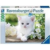 Ravensburger - Gatito blanco, puzzle de 1500 piezas (16243 7)