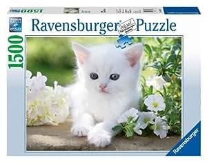 Ravensburger - 16243 - Puzzle - Chaton Blanc - 1500 pièces