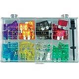 Wentronic Set di Automotive fusibili (10 elementi)