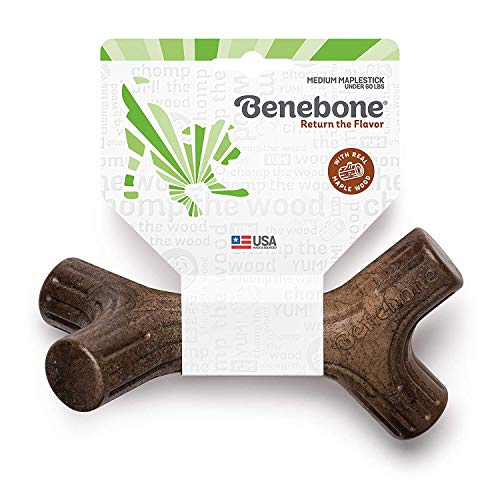 Benebone Maplestick Durable Dog Stick Chew Toy, Made in USA, REAL Maple Wood Flavor, Medium