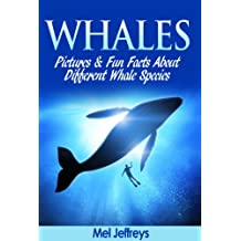 Whales Pictures & Fun Facts About Different Whale Species (English Edition)