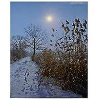 Weihnachtsbild mit BeleuchtungLED Canvas Bild 40cmx50cm