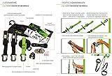 eaglefit Schlingentrainer Sling Trainer Professional für Ihr Functional Training, Grün, 938-164-38 - 2