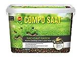 COMPO SAAT Nachsaat-Rasen,  Spezielle Nachsaat-Mischung  mit wirkaktivem Keimbeschleuniger, 2 kg, 100 m² -
