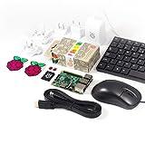 Raspberry Pi Starter-Set mit 2 Ninja Pibow