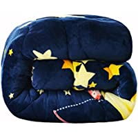 JIJIHAO beizi Moon Bend Winter dicken warmen Winter ist Single Doppel Frühling und Herbst ist Quilt Quilt Quilt Quilt Studentenwohnheim SAMT (größe : 220 * 240cm(4kg))