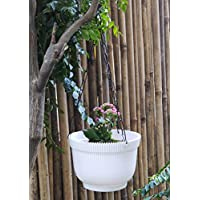 Wonderland (Set of 2) Hanging Basket with Chain and Drain Tray Attached in White Colour