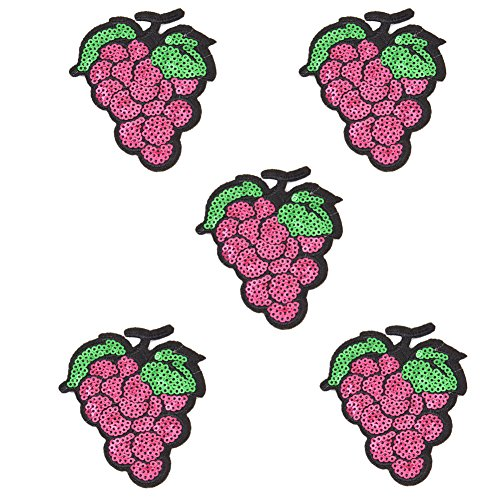 5X Toruiwa Patches Bestickte Aufnäher Obst Patches Nähen Patch Sticker Applique Badge für Kleid Hut Schuhe Jeans DIY Kostüm Schmücken (Traube)